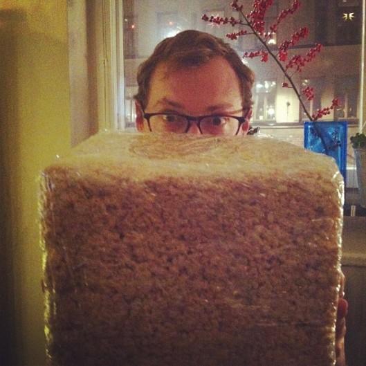 krispy cube // the muffin myth