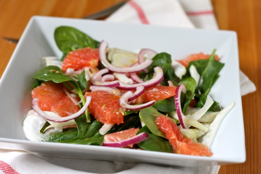 grapefruit and fennel salad // the muffin myth